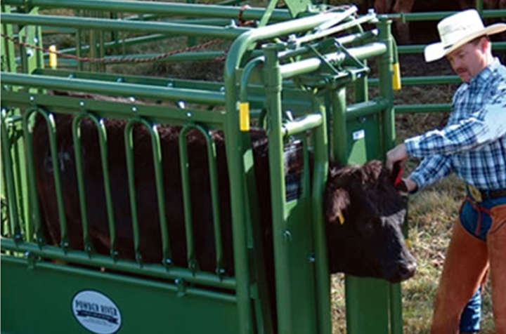 Tarter equipment cattle chute